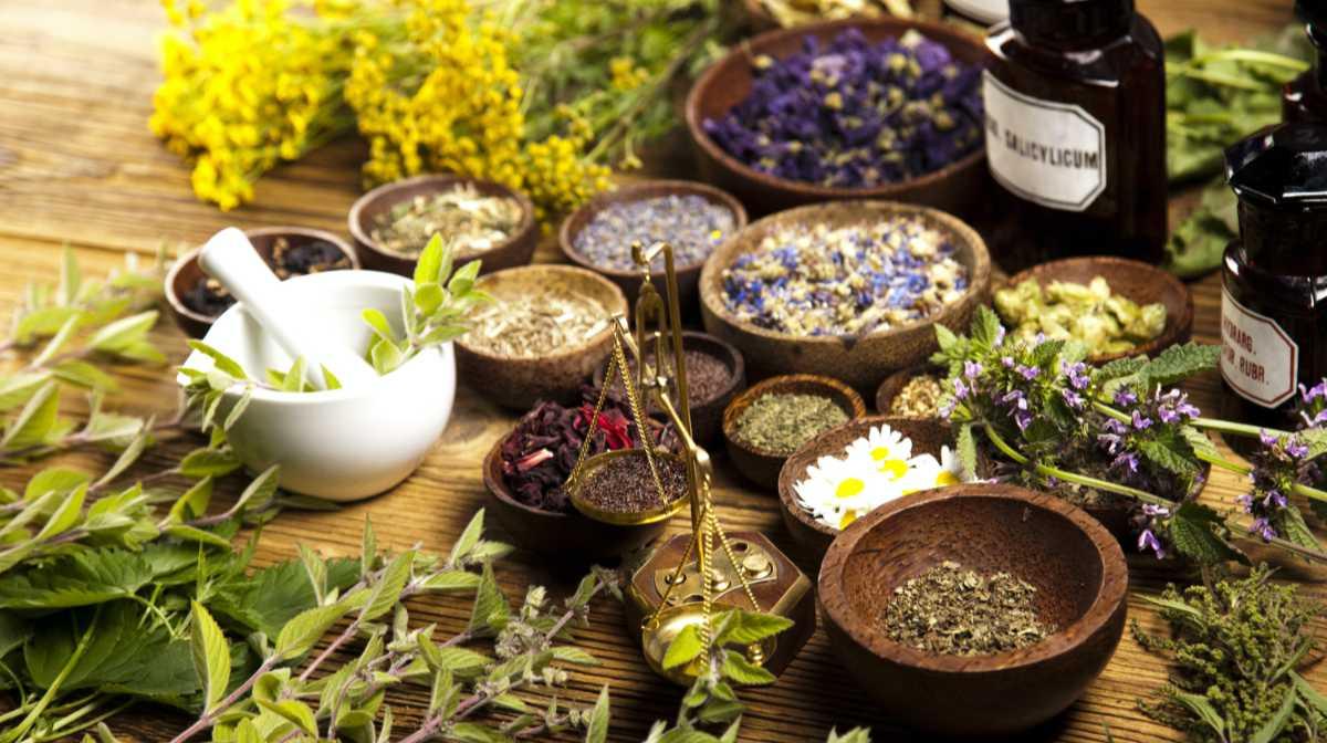 6 билки за красива кожа